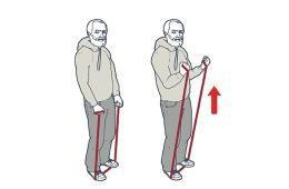 graphic about Printable Resistance Band Exercises for Seniors named 9 Straightforward Resistance Band Workout routines for Seniors Camino