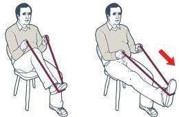 graphic regarding Printable Resistance Band Exercises for Seniors named 9 Very simple Resistance Band Workouts for Seniors Camino